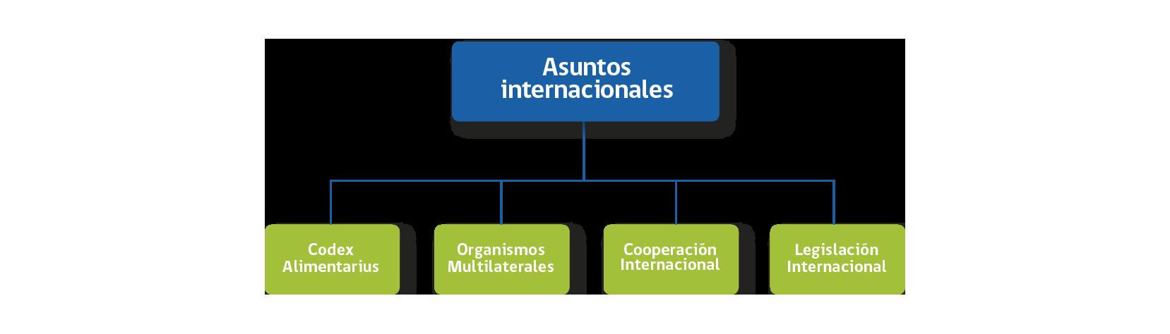 A. Internacionales