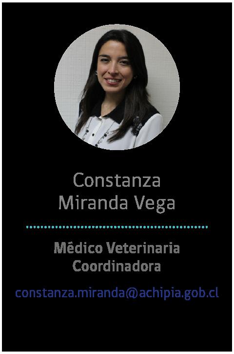 05 - Constanza M.