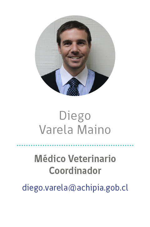 15 - Diego