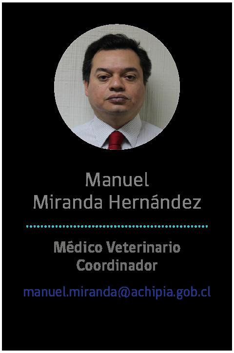 12 - Manuel