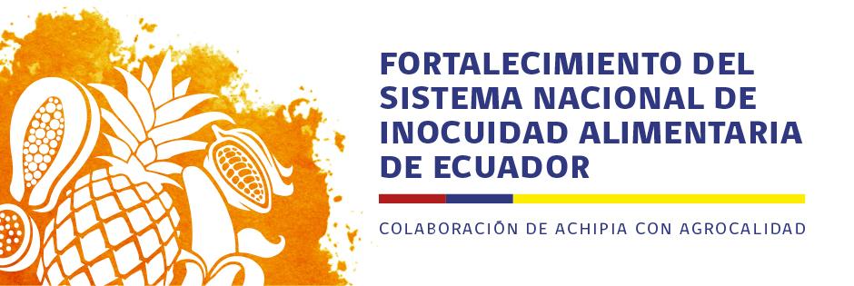 banner Proyecto Ecuador ok