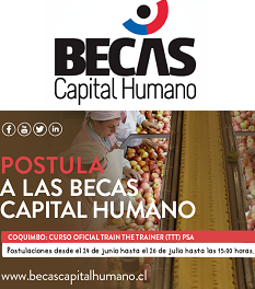 Becas CORFO_Banner