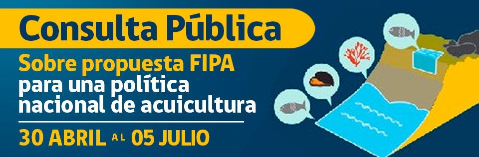 Banner Consulta Pública Fipa