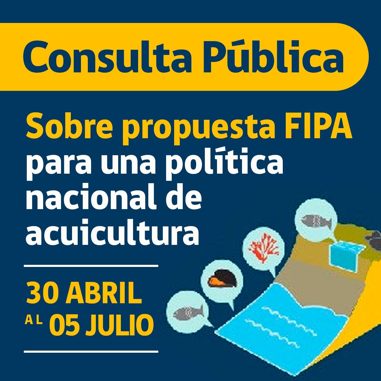 Consulta Pública Fipa